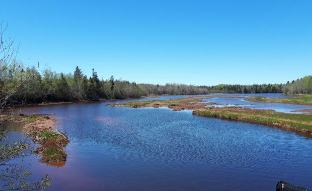 Karen MacLeod-Wilkie water view